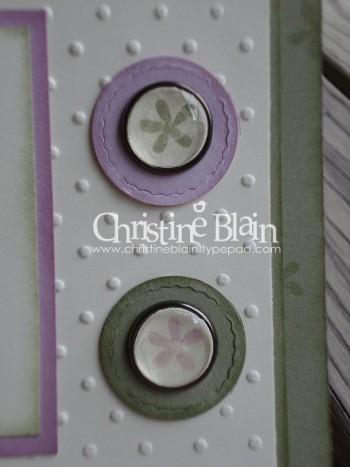 Cheep Talk - close-up of BABs