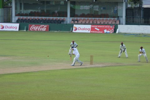 Jack playing cricket Sri Lanka